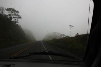 Drive (3)