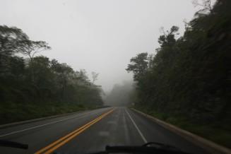 Drive (5)