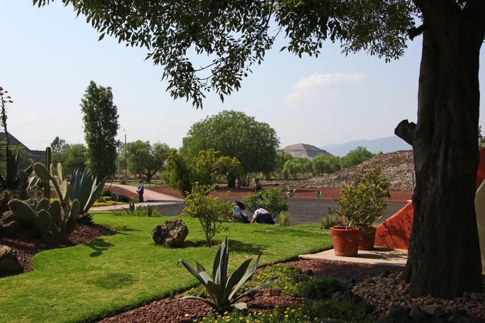 Teotihuacan (186)