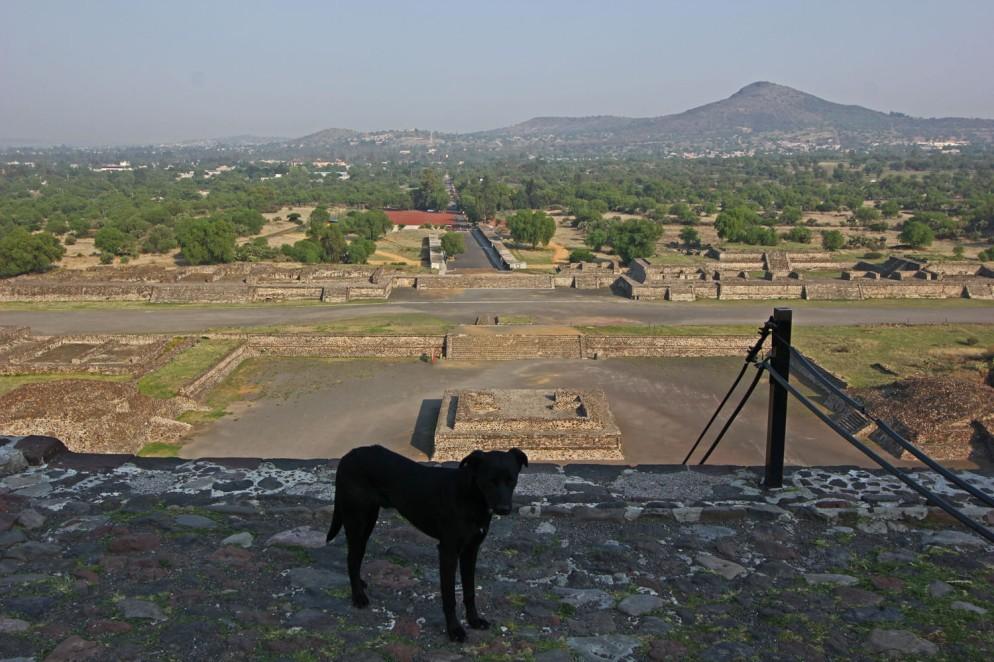 Teotihuacan (31)