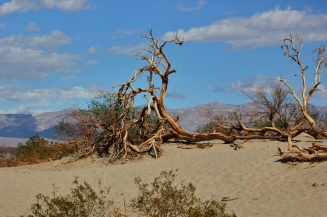 death-valley32