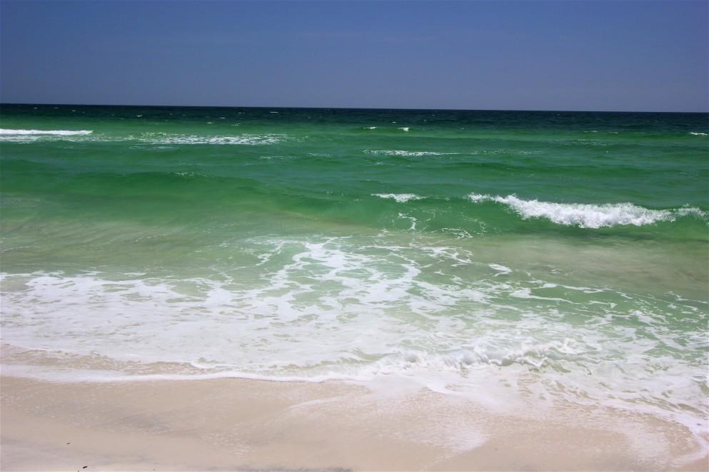 Florida (14)
