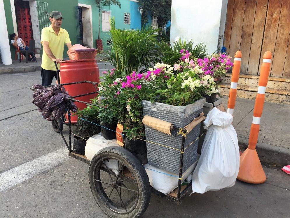 cart70
